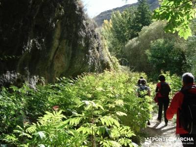 Hoces del Río Duratón - Sepúlveda;viajes senderismo semana santa viajes senderismo agosto reto se